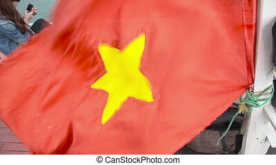 Vietnamese flag on the wind