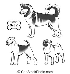 Vector set dogs. - Set of dogs. Contour on a white...
