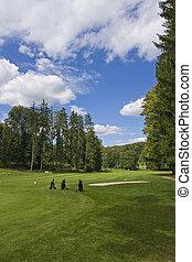 fairway of a beautiful golf course - three golf trolleys...