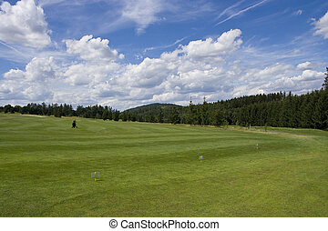 fairway of a beautiful golf course - golf troley standing on...