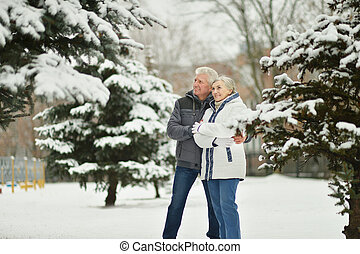 Senior couple in winter