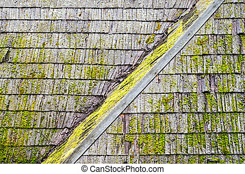 Grunge wooden shingle roof - Wooden shingle roof with molds...