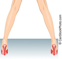 woman legs isolated