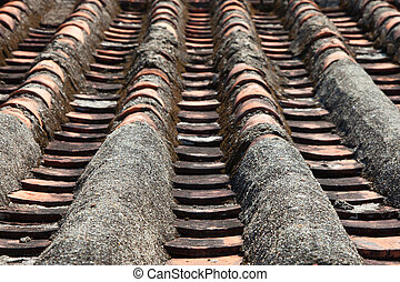 Close up of Chinese rooftop