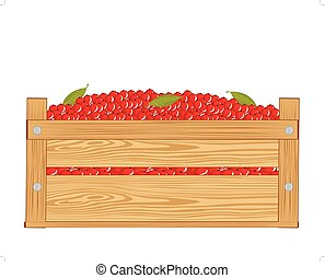 Box with red berry - Wooden box with red berry on white...