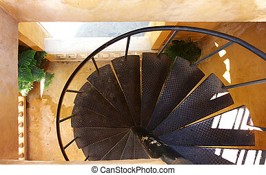 Spiral steel stairs in the building with green plant
