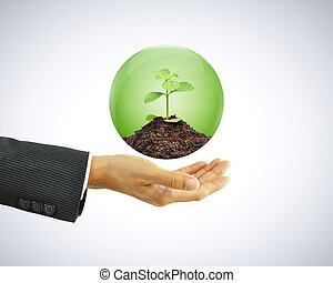 Businessman hand holding green sapling with soil in the globe