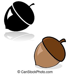 Acorn drawing - Drawing of an acorn in color and black and...