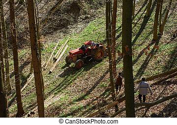 Woodcutters using a logging tractor with winch - Senior...
