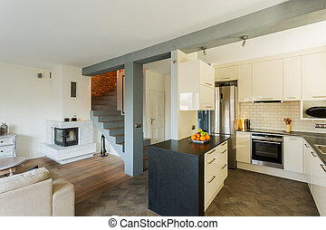 Open kitchen and living room in luxury house