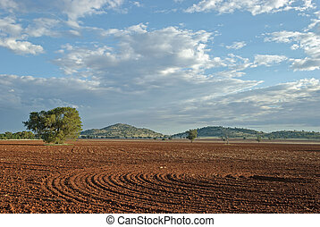 landscape - a rural paddock worked up with hills and an...