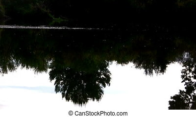 Perfect Loop Reflection Lazy - A calming rivers reflection...
