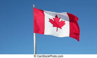 Canadian Flag - Canadian flag waving against blue sky