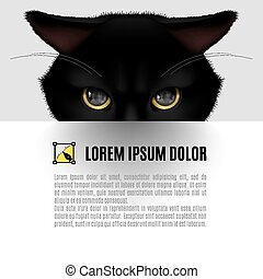 Black cat - Head of black cat poster with text