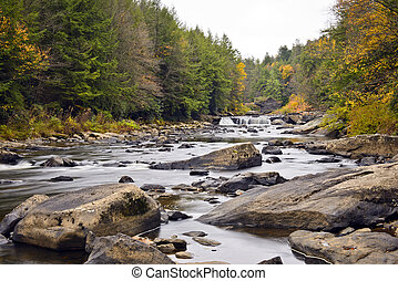 Autumn in Swallow Falls - Swallow Falls waterfall in the...