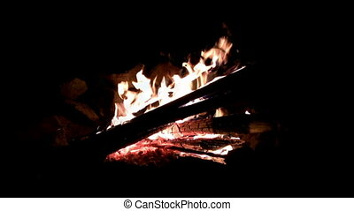 Seamless Loop Campfire Log Night - A night closeup shot of a...