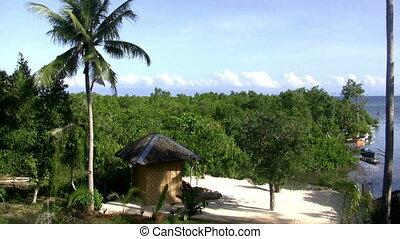 Seamless Loop White Sand Beach - White sandy beach island...