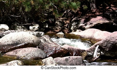 (Perfect Loop) Boulder Mountain - Capturing a fast flowing...