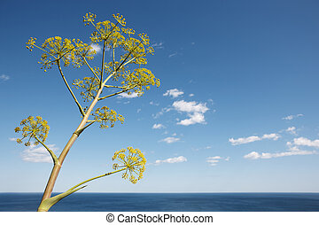 Mediterranean coastline landscape with plant in Alicante. Spain