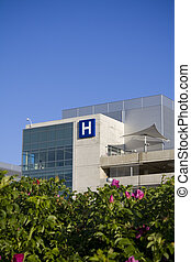 Modern hospital behind flowers shot in summer
