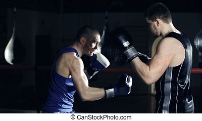 Boxers Training - Close up of boxer punching gloves of his...