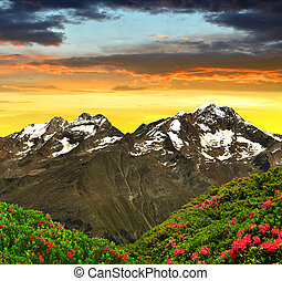 Swiss Alps - Weissmies, Lagginhorn and Fletschhorn at sunset...