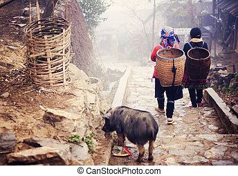 Vietnamese woman walking to Sapa. - Hmong women are on a way...