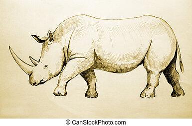 Rhino Sketch
