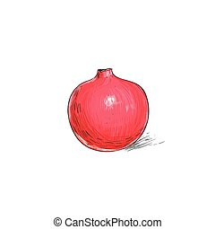 garnet fruit pomegranate sketch draw isolated over white...
