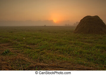 Dawn about meadows.Horizontal view - Poland,late summer.Dawn...