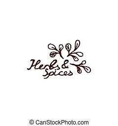 Herbs and Spices Collection - Marjoram. Hand-sketched...
