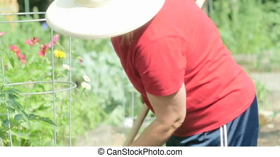 Woman working in garden UHD 4k - Mid-aged woman, working in...