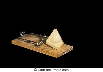 Cheese mousetrap