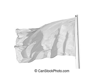 White Flag - Blank white flag, isolated on black background