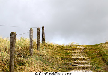 Elements of fence on the beach, North Holland, Europe