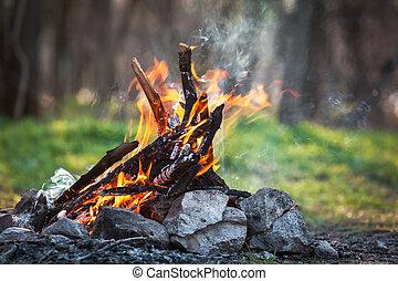 hoguera, en, el, primavera, forest., CARBONES, de, fuego,