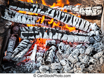 Bonfire in the spring forest. coals of fire - Bonfire in the...