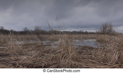 Flooded River in Prairie and Dramatic Sky Background
