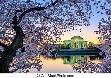 Washington DC Springtime - Washington, DC at the Jefferson...
