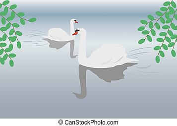 swans - pair of swans on misty lake