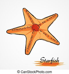Starfish - Hand drawn vector red, orange starfish on the...