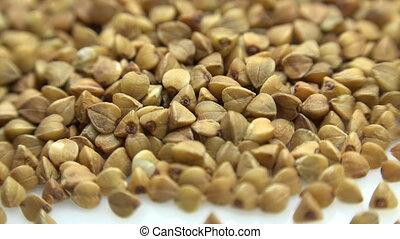 High Resolution Macro of Dry Buckwheat Grain. Dolly Shot