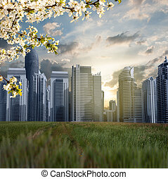City skyscrapers on a background of nature