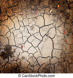 crack on dry soil background