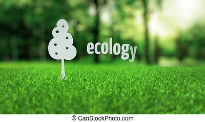 Apple paper tree grows ecology concept - White apple paper...
