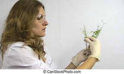 lab woman examine plant - laboratory woman with glasses...