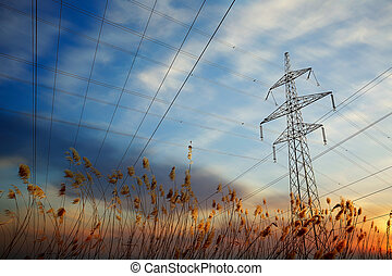 Pylon and power lines at sunset with grass and sun