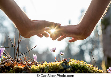 Hand Covering Flowers at the Garden with Sunlight - Close up...