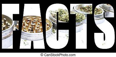 fatti,  Marijuana
