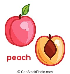 Stylized illustration of fresh peach on white background.